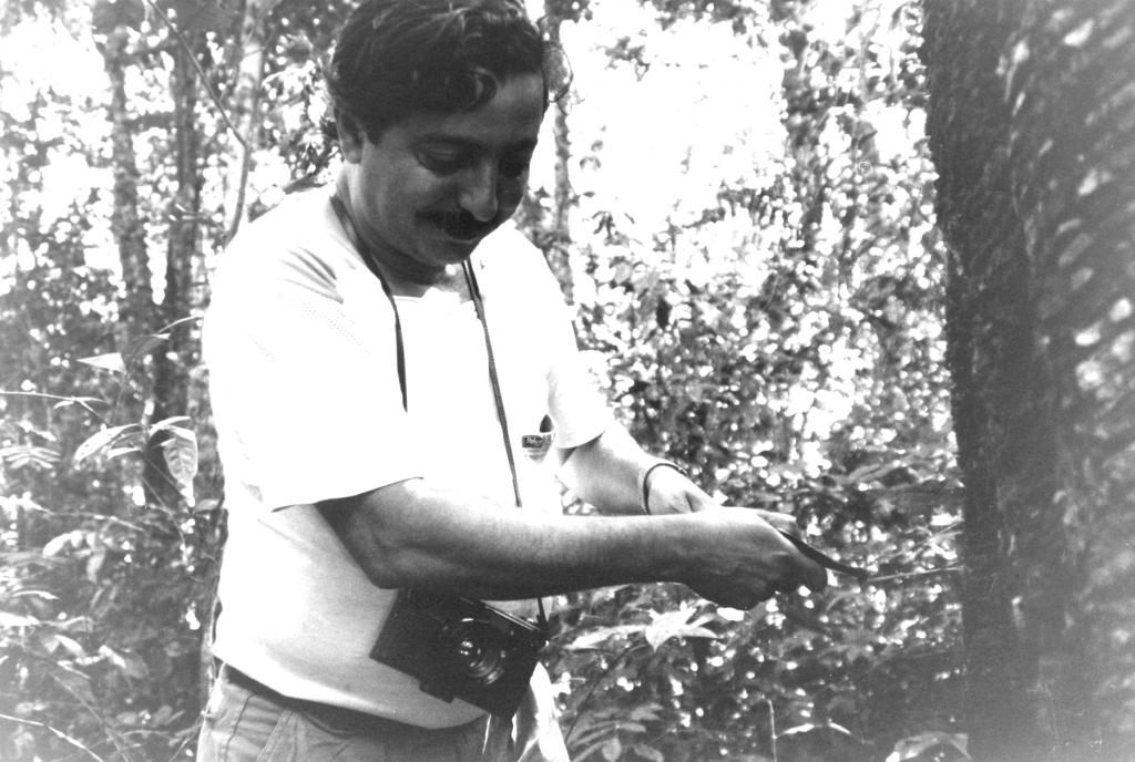Chico Mendes incide un albero di gomma pochi giorni prima della morte